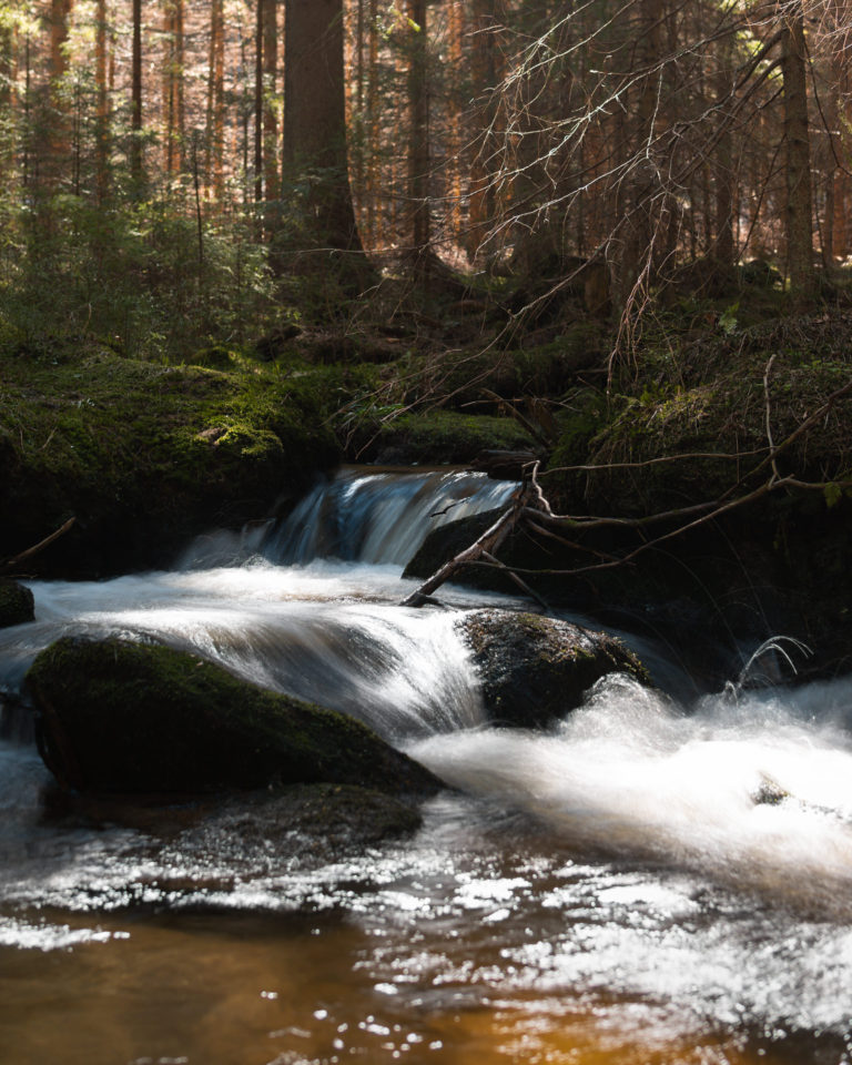 Long Exposure Photography of a small waterfall in the Sumava Woods